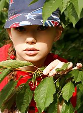 Kate goes on a wild berry-picking trip